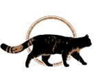 Wildtierland Hainich gGmbH-Logo